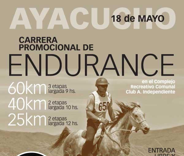 Endurance en Ayacucho, para amantes de los caballos.
