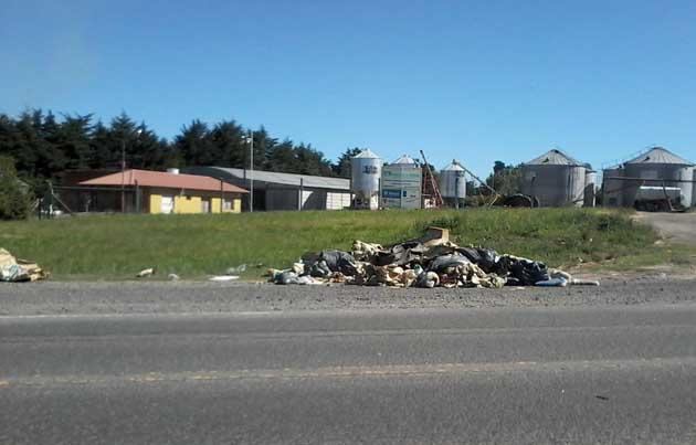 Descargan basura en un sector de banquinas de la 226