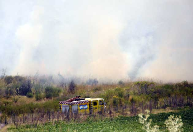 Importante incendio afecta a Cerro Leones